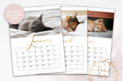 Printable Monthly Calendar 2020 Cats