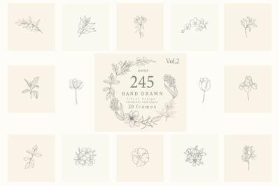Botanical Hand Drawn Designs, Logo, Frames
