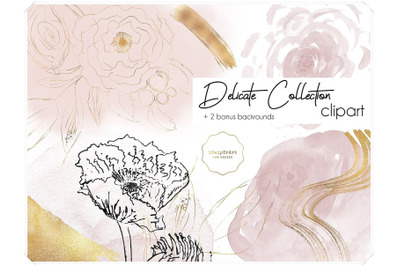 Delicate Collection Watercolor Design Bundle