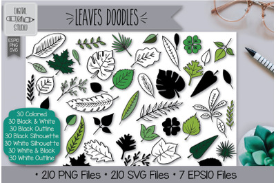 210 Leaves Doodles Hand Drawn Illustrations Bundle