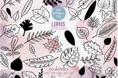Hand Drawn Leaves   Tropical Foliage Plant