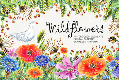 Watercolr Wildflowers Clip Art