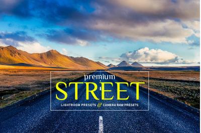 Premium Street Lightroom and Camera Raw Presets