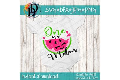 One in a melon svg, watermelon SVG, melon svg, watermelon clipart, ba