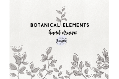 Modern floral illustrations - doodle leaves clipart, floral elements