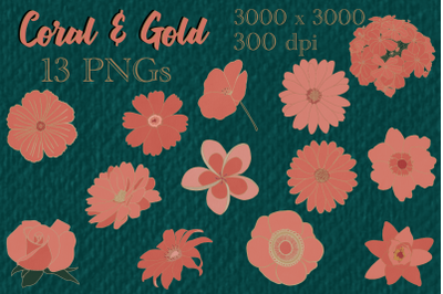 Coral and Gold Flower Pack