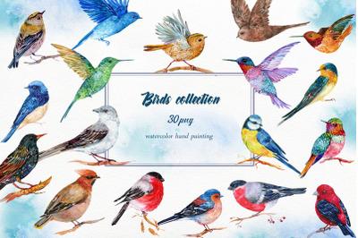 Collection  Birds Clipart, 30 Watercolor Birds