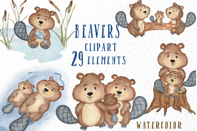 Watercolor animals clipart Beaver clipart Forest Animals