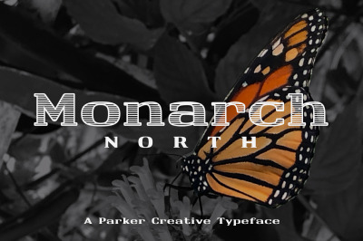 Monarch North Line Hatch Font