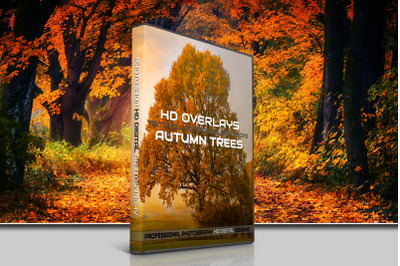 200 HIGH QUALITY Autumn TREES, Forest, Digital Photoshop Overlays