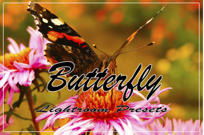 Butterfly Instagram Blogger Lightroom Presets