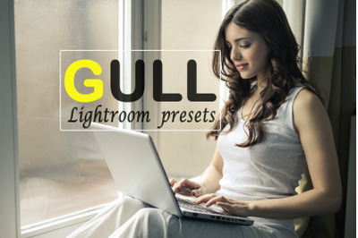 Gull Instagram Blogger Lightroom Presets