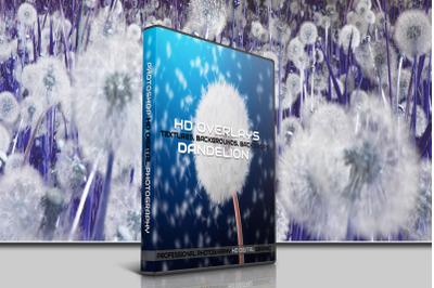 200 HIGH QUALITY DANDELION, Flower, Digital Photoshop Overlays