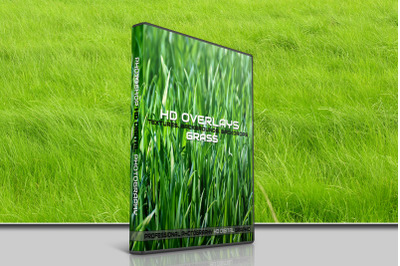 200 HIGH QUALITY GRASS, Nature, Digital Photoshop Overlays