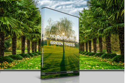 200 HIGH QUALITY Green TREES, Forest, Digital Photoshop Overlays