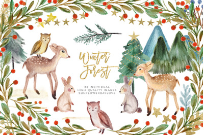 Winter Woodland Animals Clipart, Watercolor Pine Trees Clipart