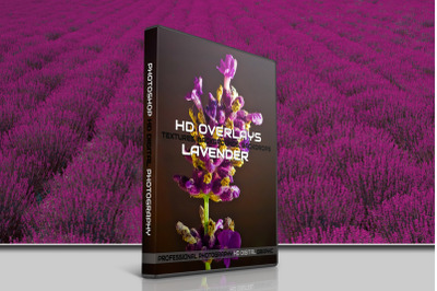 200 HIGH QUALITY LAVENDER Digital Photoshop Overlays
