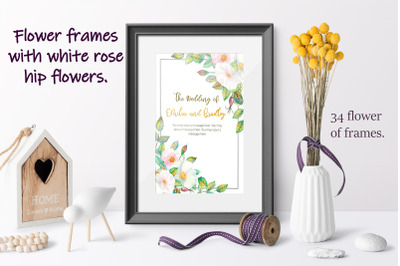 Flower frames with white rose hip flowers. Watercolor