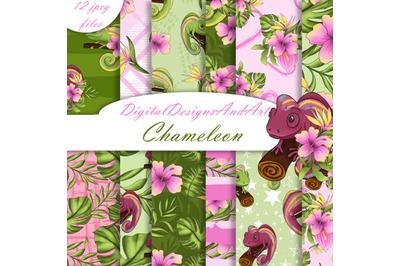 Chameleon digital paper