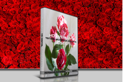 200 HIGH QUALITY ROSES, Flower, Digital Photoshop Overlays