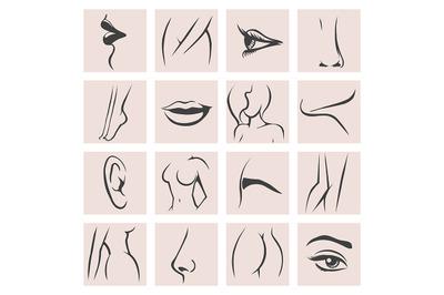 Female Body Parts set