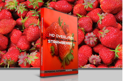 200 HIGH QUALITY STRAWBERRY, Fruit, Digital Photoshop Overlays