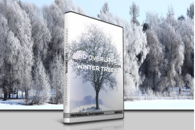 200 HIGH QUALITY Winter Snow TREES, Digital Photoshop Overlays