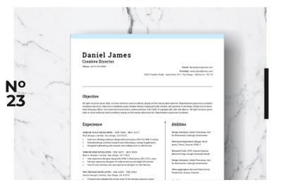 Resume Template Vol. 03