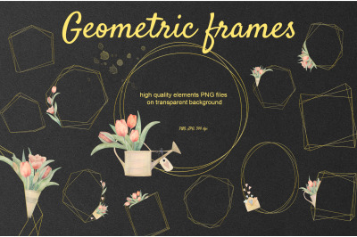 Tulip Geomrtric Golden Frames