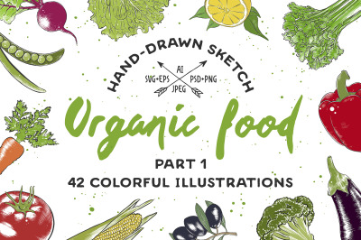 Set of 42 organic food sketches