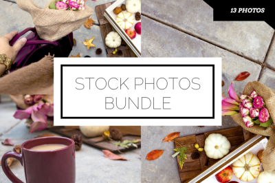 Fall Stock Photo Collection