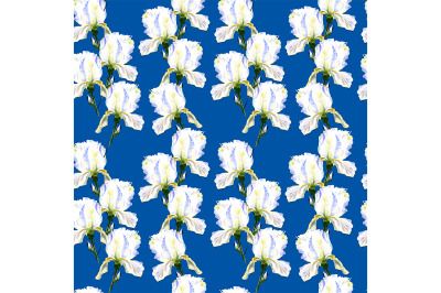 seamless pattern iris