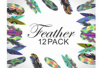 Vector Feather Clipart Set