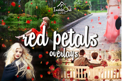 Red rose falling petals Clipart, Red Flower overlays for Photoshop