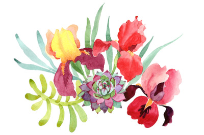 Bouquet with red irises watercolor PNG