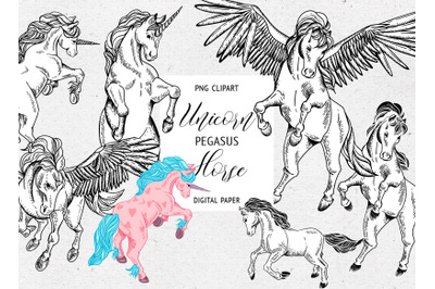 Hand Drawn Unicorn, Horse, Pegasus