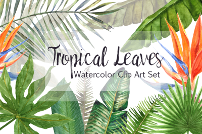 Watercolor Tropical Leaves Clip Art Set