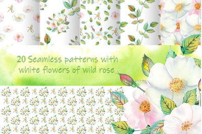 20 Seamless patterns with white flowers of wild rose