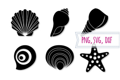 Shell svg set. Starfish svg. Seashell clipart, beach cut file