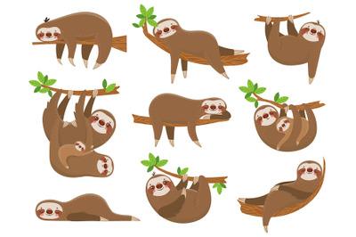Cartoon sloths family. Adorable sloth animal at jungle rainforest. Fun