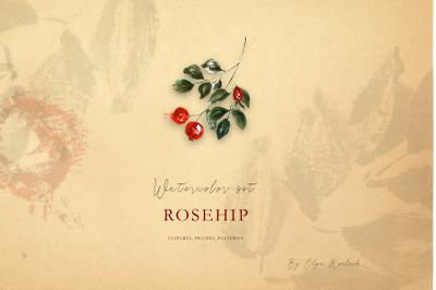 Rosehip Watercolor autumn set