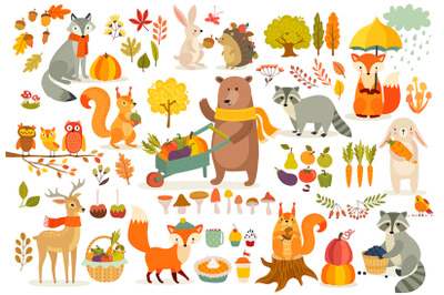 Fall theme set, forest Animals hand drawn style