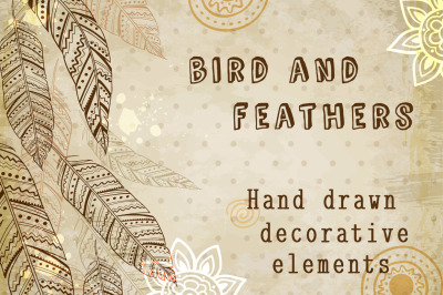 Feathers and bird in ethnic style.
