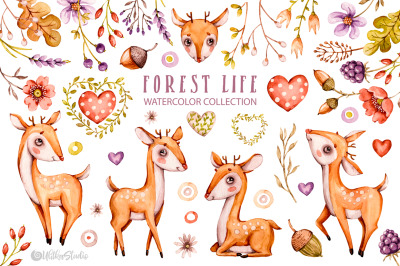 Cute baby wild deers. Nursery Watercolor clipart. Kids forest animals