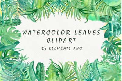 Watercolor tropical leaves, bamboo, cactus