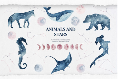 Animals and stars collection