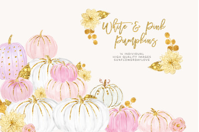 White and Pink Pumpkins, Watercolor Pastel Pumpkins, Pastel Pumpkins