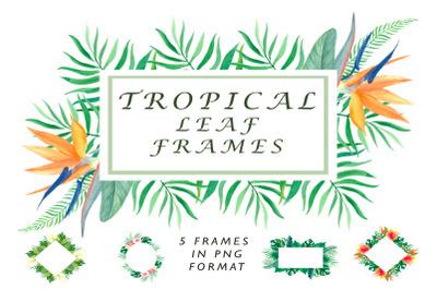 Tropical leaf frames