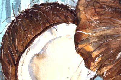 Watercolor Coconuts Print & Clip Art