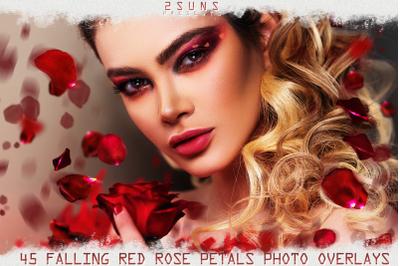 Falling Rose Petals Photo Overlays , Rose Petals, Red Rose Petals PNG,